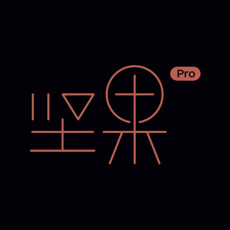 坚果Pro (1).png