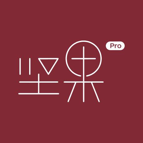 坚果Pro (2).png