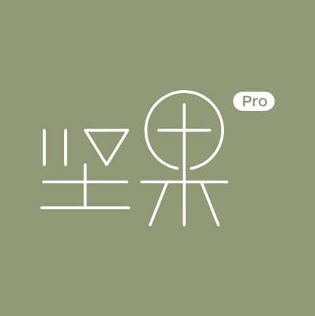 坚果Pro (4).png
