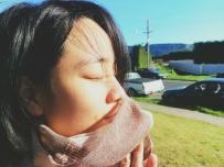 新西兰的冬。