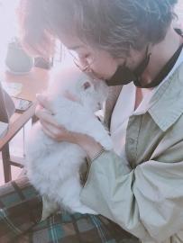放开那只小猫