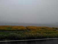 下雨天,朦胧的湖面