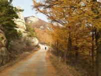 我的路,有汗水,有微笑。(3)