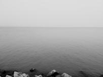 深圳湾海面