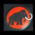 大象出去走走