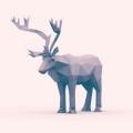斑马先森以迷鹿