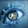 你在我眼里