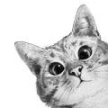 cattreer