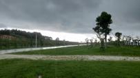 暴风雨之前