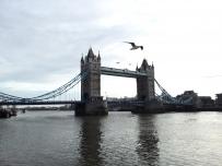 2015年T1在英国拍的那些照片