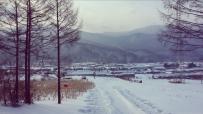 哈尔滨-雪谷