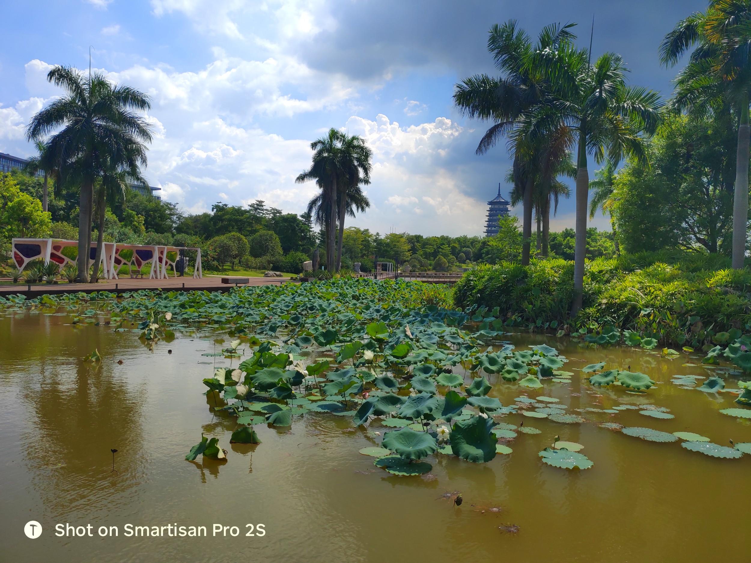 南宁-五象湖公园