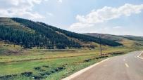 内蒙古高山牧场