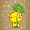 疏雨滴梧桐